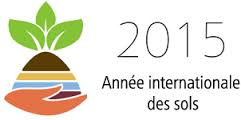 logo Année internationale du sol